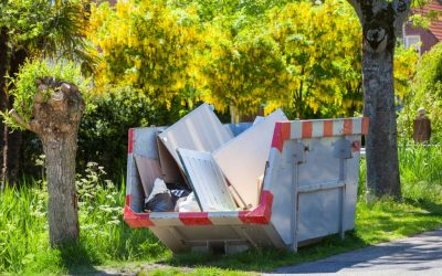 Smart Waste Disposal Tips: How to Create and Use Compost